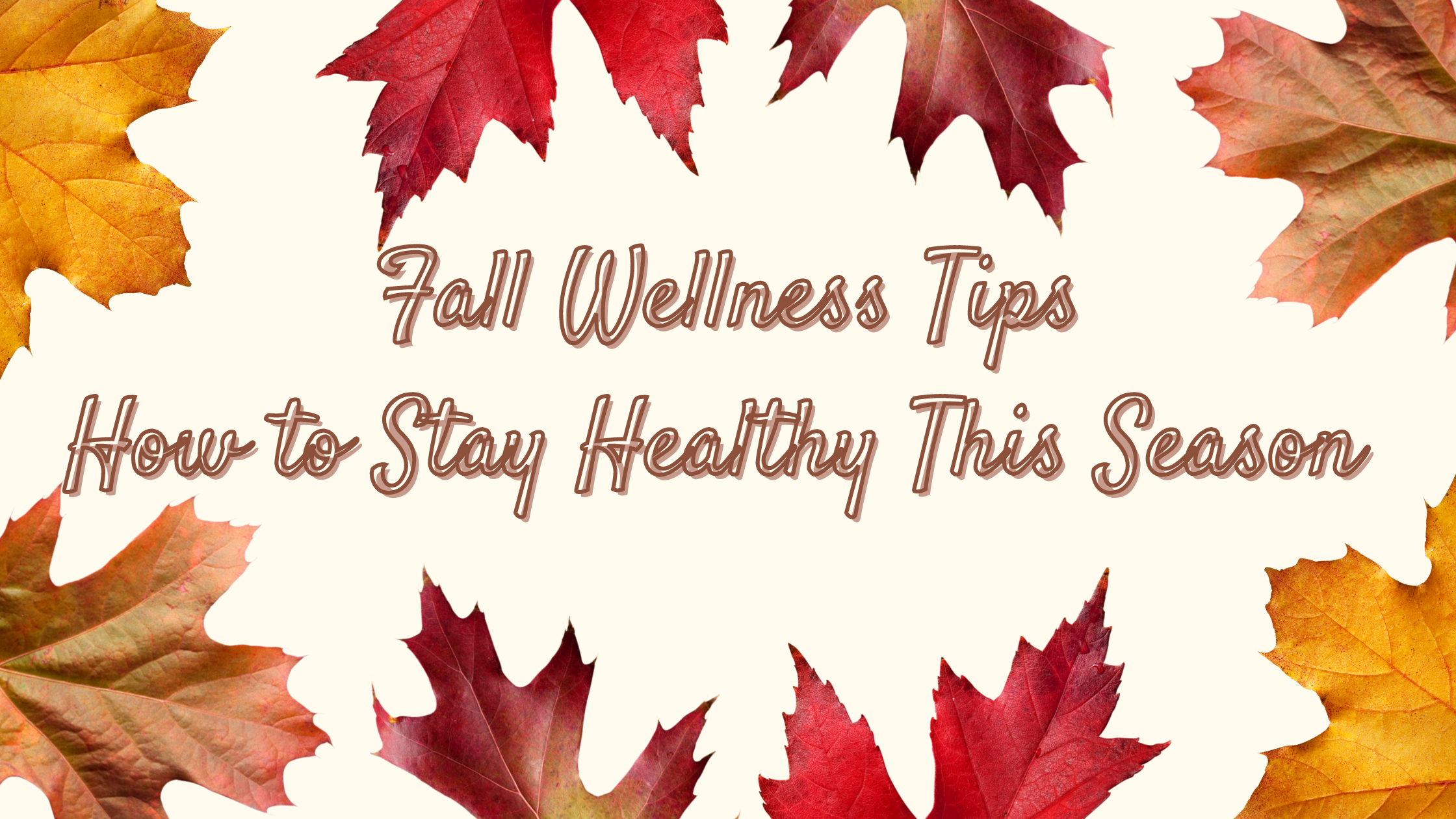 Tips for Transitioning to Fall Blog Banner