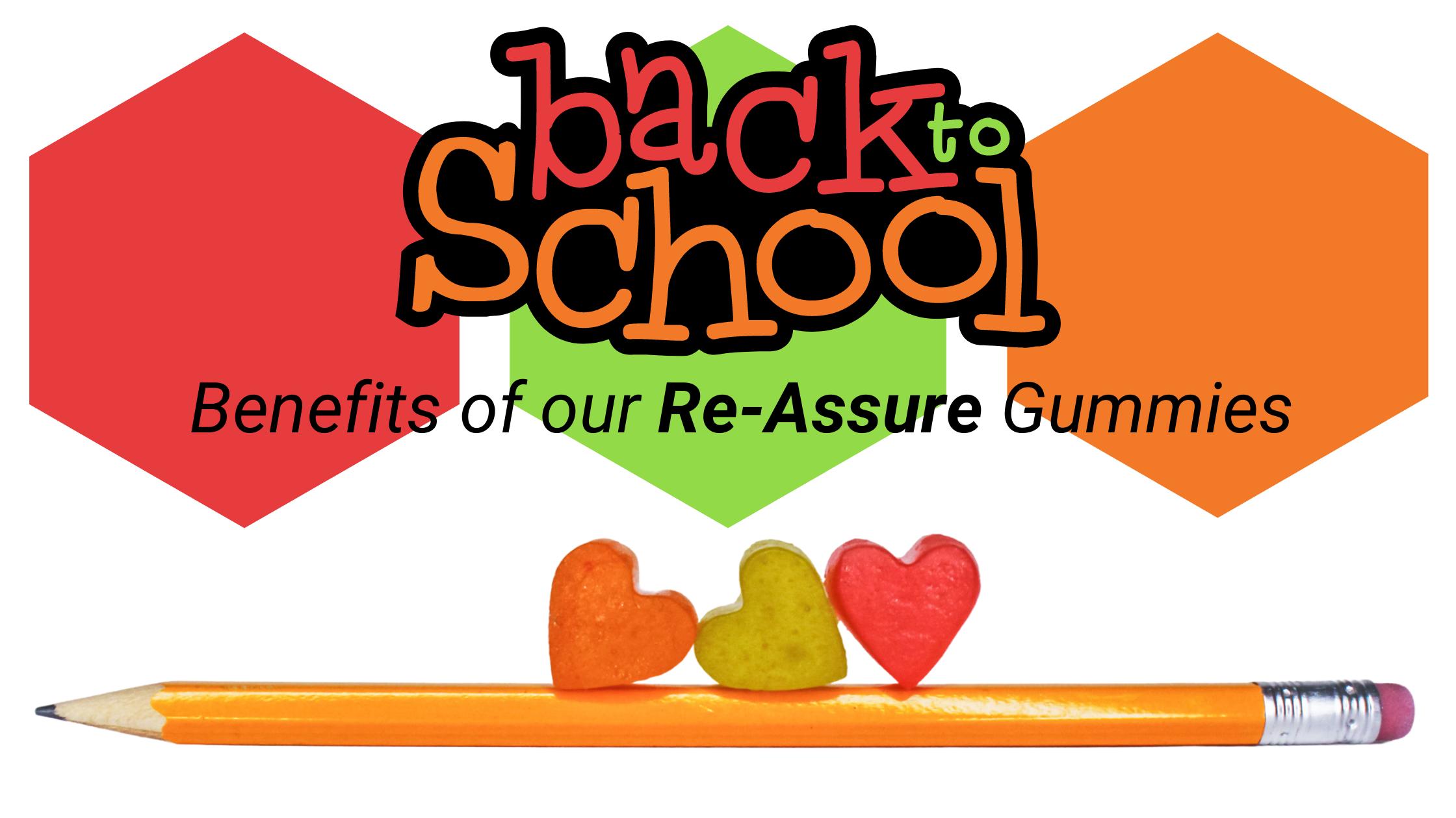 BACK TO SCHOOL Blog Banner