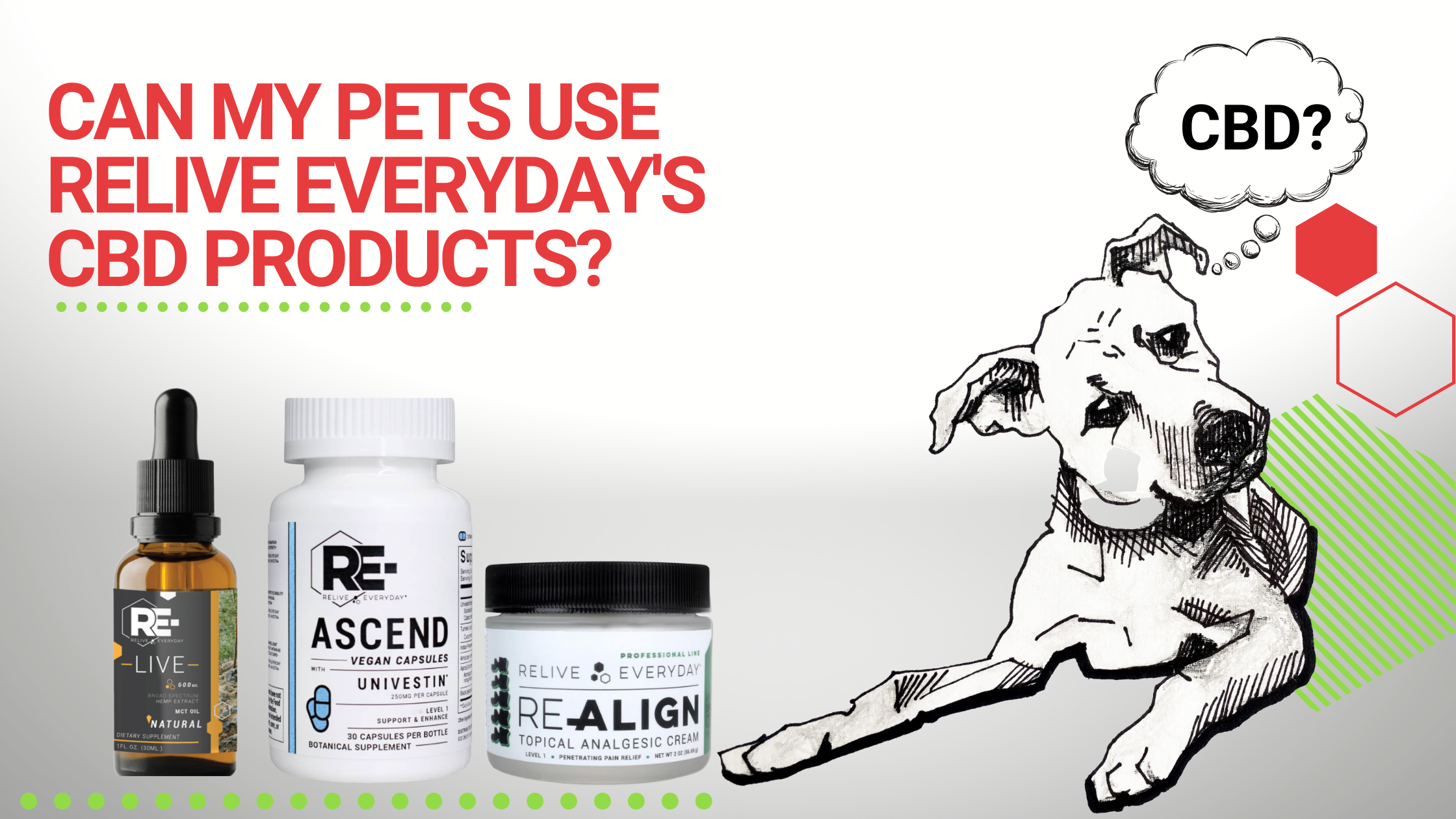 CAN MY PETS USE RELIVE EVERYDAY'S CBD PRODUCTS Blog Banner