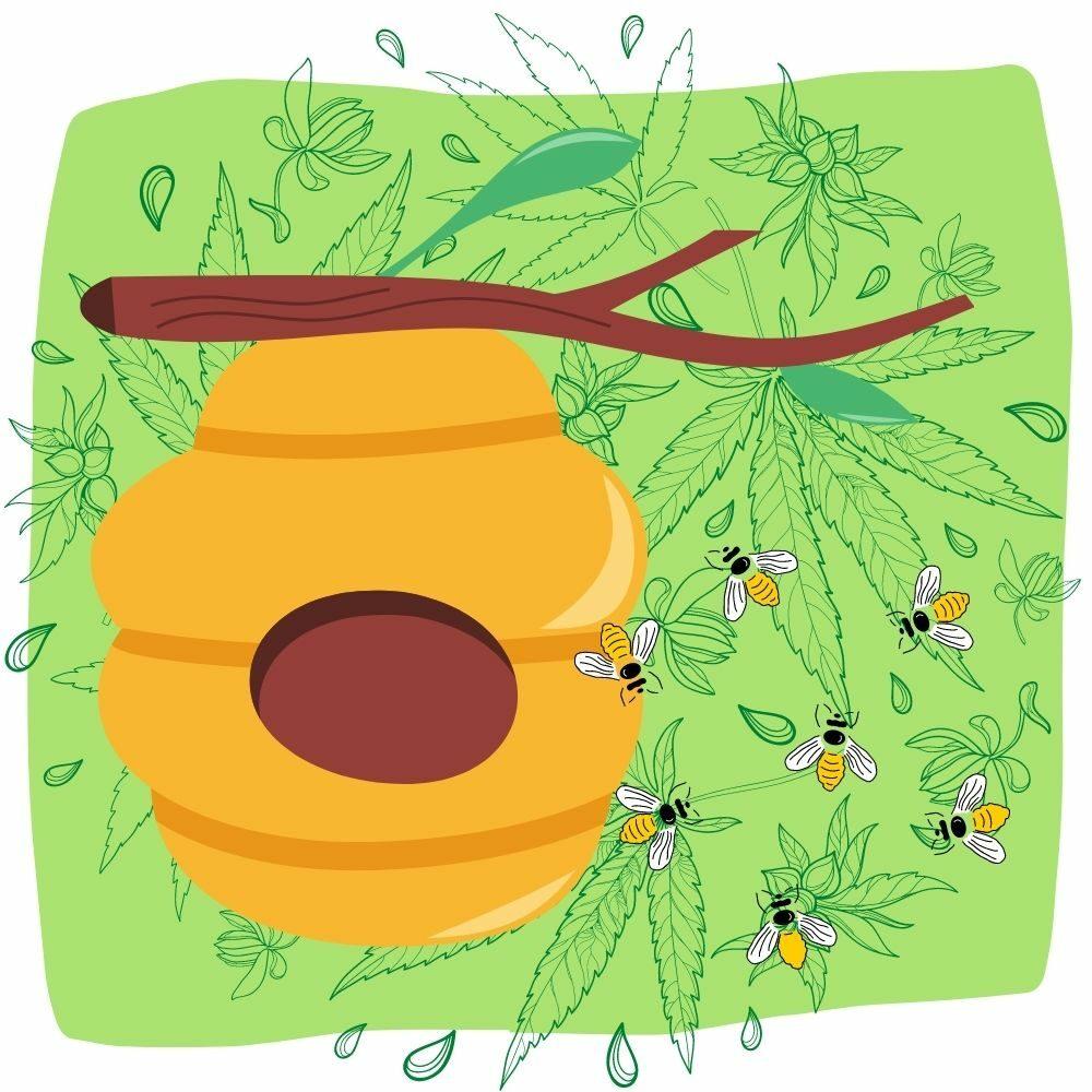 Green Living blog graphics beehive